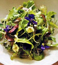 Gratin di verdure Ricetta - Ricette di Cucina Dolci e Salate Buffet, Cabbage, Salad, Vegetables, Plants, Savoury Recipes, Antipasto, Food, Lawn
