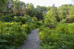 Landscape Architecture, Landscape Design, Architectural Plants, Garden Paving, Garden Structures, Plant Design, How To Level Ground, Pathways, Federal