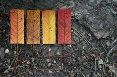 """Geometric Autumn"" series ~James Grigg"