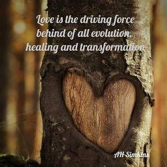 #love #heartsintrees