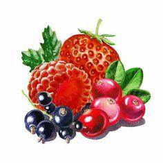 irina sztukowski : very very berry
