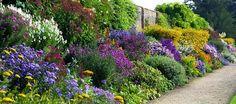 trvalkova zahrada