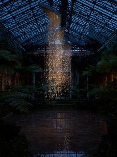 :: Light: Installations by Bruce Munro- Light Shower ::