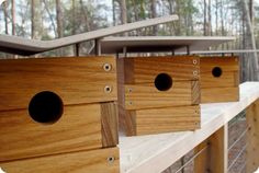 Modern Bird House Designs If you really are hunting for great suggestions about working with wood, then http://www.woodesigner.net can help out!