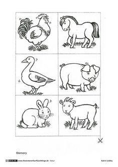 die 23 besten bilder zu bauernhof tiere malen | tiere