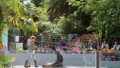 Parque Zoológico da Maia. Outdoor Decor, Home Decor, Zoo Park, Decoration Home, Room Decor, Interior Decorating