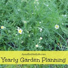 It's not too late to plan your garden. #gardening #springgarden #dan330 http://livedan330.com/2015/04/10/late-spring-and-early-summer-garden-planning/