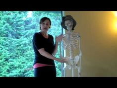 Alignment Monkey | Breathing Mechanics and The Colon 2 good short videos explaining internal pressure