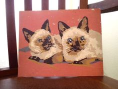VINTAGE PAINT BY NUMBER ~ SIAMESE KITTENS ~ 1950's