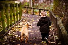 Dogs and Kids: Teaching your child to care for the family pet