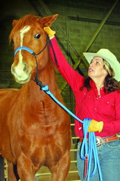 """Make progress with an """"advance and retreat"""" approach to your head shy horse"""