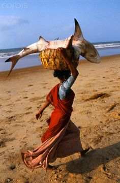 Shark, Catch of the Day, India -representation of billions of women around the world who might have the benefit of NOT being subjected to mainstream ideas of food and body shaming. (Many are selling food without the overt consumerism! Gente India, People Around The World, Around The Worlds, Amazing India, India People, World Cultures, Belle Photo, Beautiful World, Shark