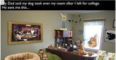 Wenn Eltern ihre lustige Seite entdecken - Win Bilder #Humor
