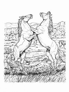 "Horse Coloring Pages Picture 5 | free sample | Join fb grown-up coloring group: ""I Like to Color! How 'Bout You?"" https://m.facebook.com/groups/1639475759652439/?ref=ts&fref=ts"