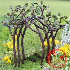 Leafy tree branch arbor Do you love miniature gnome and fairy gardens? If you want fairy garden decor and fairy gardening ideas like you see on our feed, check us out!
