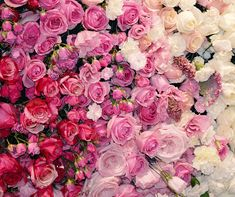 FLOWERS • #flowers #flowerphotography