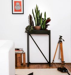 Cozy living room and one RoomGardens Terra - our plant table for your beloved plants and other goods. #interiordesign #livingroom #planttable #plantlovers #roomgardens #natureindoors