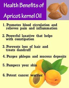 Ayurvedic health benefits of Apricot kernel oil Beauty Care, Diy Beauty, Soap Making Supplies, Soap Base, Pure Essential Oils, Fragrance Oil, Health Benefits, Body Care, Skincare