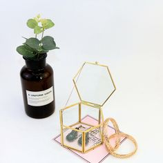 Hexagonal Glass Jewelry Box Vintage Wedding Favors Geometrical Clear Earring Ring Case Flower Succulent Plants Display Box-in Jewelry Packaging & Display from Jewelry & Accessories on Aliexpress.com | Alibaba Group Vintage Wedding Favors, Wedding Boxes, Planting Succulents, Planting Flowers, Flower Plants, Succulent Plants, Cheap Jewelry, Jewelry Accessories, Glass Jewelry Box