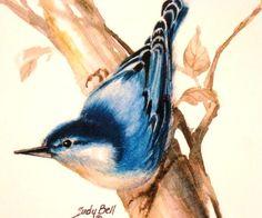 Nuthatch blue bird art decor print by judithbelloriginals on Etsy, $14.00