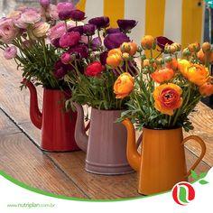 Comece a semana colocando sua criatividade em prática! Existem várias formas de decorar sua casa com flores e mais flores espalhadas. Você pode produzir arranjos e colocá-los em lugares inusitados, como bules de café, vasos transparentes cheios de botões (isso mesmo, aqueles botões de costura) ou enfeitar a mesa com copos e plantas.