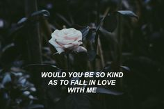 pinterest ☆ @ouiouimaggie would you be so kind? // dodie clark