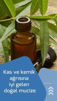 Natural Medicine, Hot Sauce Bottles, Plant Leaves, Health Fitness, Fitness Inspiration, Healthy, Nature, Plants, Amigurumi