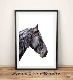 Black Horse Print Animal Wall Art Farm Animal Large