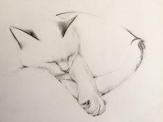 Drawing of sleeping cat — Kellas Campbell Art
