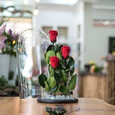 Τριαντάφυλλα που διαρκούν για χρόνια Forever Rose, Glass Vase, Roses, Table Decorations, Plants, Furniture, Home Decor, Decoration Home, Pink