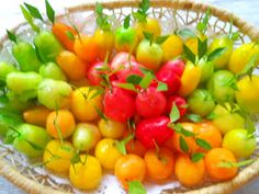 Best Thai Cuisine Menu: Mini Yellow Bean Fruits ( Kao Noom Look Choup )