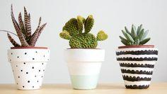 8 x simpele DIY's voor je plantjes