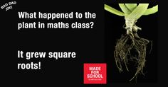 A BAD DAD JOKE for Schools Tree Day on Friday - Natalie
