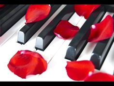 6 Hour Relaxing Piano Music: Meditation Music, Relaxing Music, Soft Music, Relaxation Music, ☯2689 - YouTube