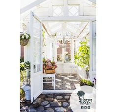 Living as close as possible to nature is the main reason for having a #greenhouse. #Hydrangeas give you calm and oxigen in the middle of the city #trending #lifestyle