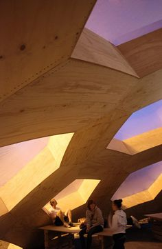 plywood dome, cool architecture, hexagonal structure, henrik almegaard, Festival structure