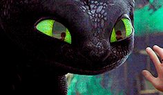 Love Toothless