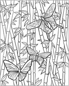 Butterfly coloring page Coloring Book Pages, Printable Coloring Pages, Coloring Sheets, Butterfly Coloring Page, Mandala Coloring, Digital Stamps, Doodle Art, Embroidery Patterns, Creative
