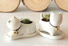 Decorative Brown Chocolate Teddy Dog Resin Flower Cactus Succulent Pot Planter Bonsai Home Garden Pot Decor