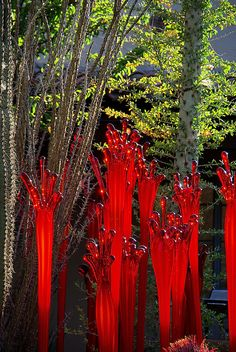 Chihuly Red Lava - Desert Botanical Garden by Al_HikesAZ, via Flickr