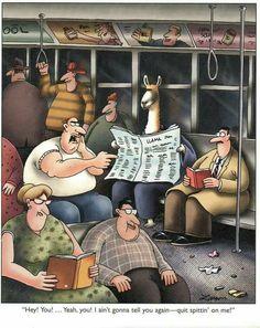 The far side by Gary Larson Far Side Cartoons, Far Side Comics, Funny Cartoons, Funny Comics, Gary Larson Comics, Gary Larson Cartoons, Wtf Funny, Hilarious, Funny Shit