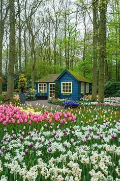 Ideas House Exterior Colors Cottage Dream Homes Beautiful Gardens, Beautiful Homes, Beautiful Places, Beautiful Flowers, House Beautiful, Beautiful Scenery, Simply Beautiful, Cute Cottage, Cottage Style