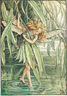 deze is natuurlijk op Willow's lijf geschreven ;) Vind k heel mooi/toepasselijk als muurschildering!    183087n01s001_bthumb