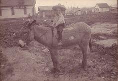 Boy riding donkey.     Courtesy: paws22. Lincoln, Nebraska (USA).