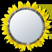 Mirror 4 Selfie [Camera]