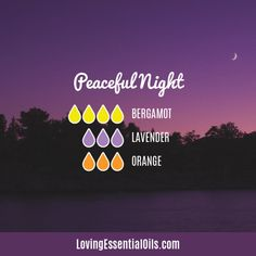 Bergamot Diffuser Blends - Relax and Uplift Your Senses! Peaceful Diffuser blend by Loving Essential Oils Essential Oils Guide, Essential Oils For Sleep, Essential Oil Uses, Doterra Essential Oils, Young Living Essential Oils, Bergamot Essential Oil, Sleeping Essential Oil Blends, Essential Oil Diffuser Blends, Essential Oil Combinations