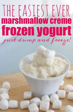 Hands down the easiest way to make DIY Frozen Yogurt! Add some Marshmallow Creme and you've got a winner. There's no need to buy it ever again!