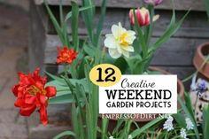 12-Creative-Weekend-Garden-Projects-H1a