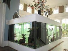 750 gallon salt-water aquarium...what I want my salt water aquarium to eventually evolve into...