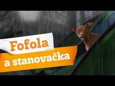 Oficiální youtube kanál tradičního československého kolového nápoje Kofola. Keď ju miluješ, nie je čo riešiť. www.kofola.cz / www.kofola.sk Signs, Youtube, Shop Signs, Youtubers, Youtube Movies, Sign